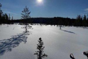 Kundenevent_Lappland_2020-1